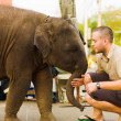 Baby Elephant Pushing Tourist Downtown Bangkok — Stock Photo