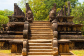 Front Steps Audience Hall Polonnaruwa Ruins Lions — Stock Photo
