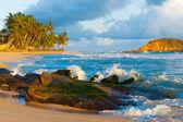 Mirissa Beach Waves Breaking Rock Island Tropical — Stock Photo