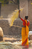 Indian Woman Hitting Palm Leaf Thatch Roof — Stock Photo