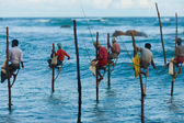 Stilt Fishermen Sri Lanka Traditional Fishing — Stock Photo
