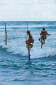 Stilt Fishing Sri Lanka Traditional Pole Dip Wave — Stock Photo
