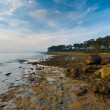 Stock Photo: Neil Island Landscape AndamRocky Coast