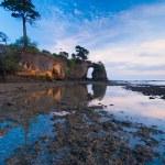 Natural Bridge Trees Low Tide Reflection Sunset — Stock Photo