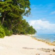 Pristine Untouched White Sand Beach Paradise — Stock Photo