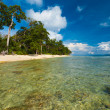 Stock Photo: Shallow Crystal Clear Water Wild Pristine Beach
