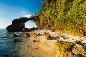 Natural Bridge Landmark Beach High Tide Bushes — Stock Photo