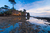 Natural Bridge Trees Low Tide Reflection Sunset — Stock Photo