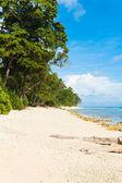 Pristine Untouched White Sand Beach Paradise — Stock Photo