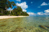 Shallow Crystal Clear Water Wild Pristine Beach — Stock Photo