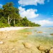 Low Tide Rocks Pristine Untouched Beach Forest - Stock Photo