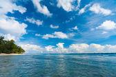 Neil Island Ocean Seascape Forest Beach Edge Wave — Stock Photo