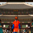 Gyeongbokgung Palace Entrance Red Guard Close — Stock Photo