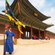 Blue Guard Flag Gyeongbokgung Palace Entrance V — Stock Photo
