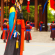 Captain Traditional Costume Guard Deoksugung — Stock Photo