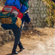 Indian Porter Carrying Heavy Bags Manual Labor — Stock Photo