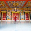 Stock Photo: Monk Entrance Rumtek Monastery Locking Doors