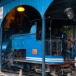 Driver Toy Train Parked Shed Angled Darjeeling - Stock Photo