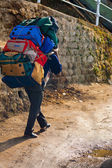 Indian Porter Carrying Heavy Bags Manual Labor — Foto Stock