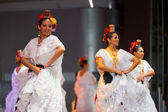 Female Mexican Folk Dancers White Dress Beautiful — Stock Photo