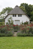 Small House in the Rose Garden — Stock Photo