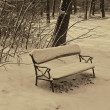 Empty Bench in the Snow — Stock Photo #39453741