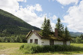 Old House With Spruces — Stock Photo
