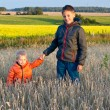 Boys in the fiels — Stock Photo