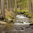 Stock Photo: WATERCOURSE