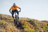 Dağ bisikletçinin sürme kir iz — Stok fotoğraf