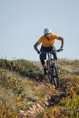 Mountain biker riding dirt trail — Stock Photo