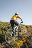 Mountain biker riding dirt trail — Stock Photo