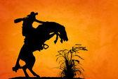 Spooked Stallion — Stock Photo