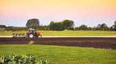 Tracteur et charrue en champ — Photo