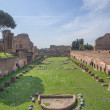 Ruins of Stadium Domitanus at the Palatine Hill in Rome, Italy — Stock Photo #17421757