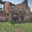 Ruins of Stadium Domitanus at the Palatine Hill in Rome, Italy — Stock Photo #17421759