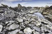 Vadehavet havet vägen till ön mando, danmark — Stockfoto