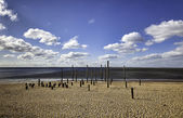 Passeio marítimo da praia perto esbjerg, dinamarca — Foto Stock