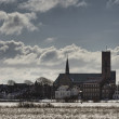 Cathedral in Ribe, Denmark seen from the marsh - Stock Photo