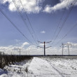 Stock Photo: High voltage pylons