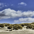 Dunes at the Danish North Sea coast — Stock Photo
