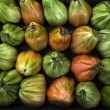Colorful Juicy Ripe Heirloom Tomatoes — Stock Photo