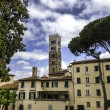 Lucca, Tuscany - View over Old Town (Italy) — Stock Photo #27088153