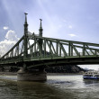 Liberty bridge in Budapest Hungary — Foto Stock