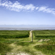 Stock Photo: Wadden sefrom island Mando, Denmark