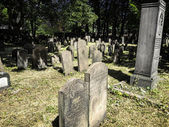 The Jewish cemetery in Copenhagen, Denmark — Stock Photo