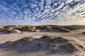 Dunes at the Danish North Sea coast — Foto de Stock