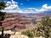 Grand Canyon National Park panorama — Stock Photo