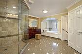 Grande salle de bain principale — Photo