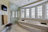 Master bath in luxury home — Stok fotoğraf